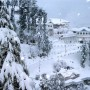 Dharamshala Covered in Snow