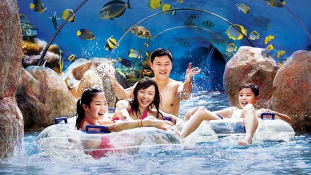Family in Water Pool